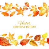 Teste padrão sem emenda das folhas de outono Duas pistas Imagens de Stock