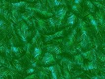 Teste padrão sem emenda das folhas de palmeira Fotografia de Stock Royalty Free