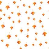 Teste padrão sem emenda das folhas do amarelo do outono aleatoriamente Imagens de Stock Royalty Free