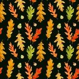 Teste padrão sem emenda das folhas e das bolotas do carvalho do outono da aquarela no preto ilustração royalty free