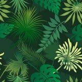 Teste padrão sem emenda das folhas tropicais ilustração do vetor