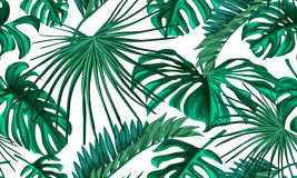 Teste padrão sem emenda das folhas tropicais do vetor Fotos de Stock Royalty Free