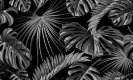 Teste padrão sem emenda das folhas tropicais do vetor Imagem de Stock Royalty Free