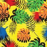Teste padrão sem emenda das folhas tropicais no estilo do pop art Fundo moderno do verão Folhas brilhantes da palma e do monstera Foto de Stock