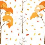 Teste padrão sem emenda de árvores do outono com as folhas que caem no fundo branco ilustração royalty free