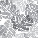 Teste padrão sem emenda de Abstact Textu floral das folhas de palmeira da selva Fotos de Stock Royalty Free