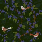 Teste padrão sem emenda de bagas e de pássaros da ameixoeira-brava Foto de Stock