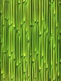 Teste padrão sem emenda de bambu Imagens de Stock