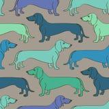 Teste padrão sem emenda de cães do bassê ilustração stock