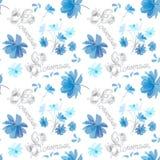 Teste padrão sem emenda de flores azuis do cosmos e da rotulação bonita ilustração do vetor
