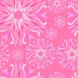 Teste padrão sem emenda de flores cor-de-rosa Imagem de Stock Royalty Free