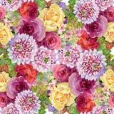 Teste padrão sem emenda de florescência das flores do jardim bonito do verão da aquarela Fotografia de Stock Royalty Free