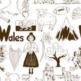 Teste padrão sem emenda de Gales do esboço Foto de Stock