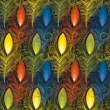 Teste padrão sem emenda de penas coloridas Fotografia de Stock Royalty Free