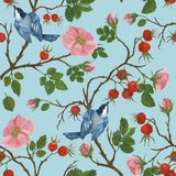 Teste padrão sem emenda de um pássaro em um ramo de um dogrose, ilustração por pinturas ilustração stock