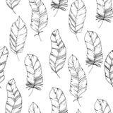 Teste padrão sem emenda desenhado à mão com as penas de pássaro do estilo do esboço Fundo de título preto e branco Chique na moda ilustração royalty free