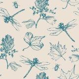 Teste padrão sem emenda desenhado à mão com libélula, besouro e plantas Fotos de Stock Royalty Free