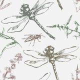 Teste padrão sem emenda desenhado à mão com libélula, vespa e plantas Imagem de Stock Royalty Free