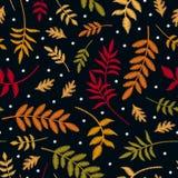 Teste padrão sem emenda do bordado com as folhas de outono em cores diferentes e em primeiros flocos de neve Plantas bordadas col ilustração do vetor