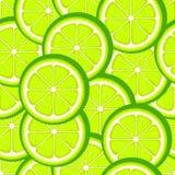 Teste padrão sem emenda do cal do citrino Fatias verdes do cal Ilustra??o do vetor ilustração royalty free