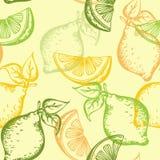 Teste padrão sem emenda do citrino Fotos de Stock Royalty Free