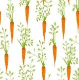 Teste padrão sem emenda do desenho a mão livre das cenouras ilustração stock