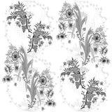 Teste padrão sem emenda do design floral Vetor eps10 Fotografia de Stock