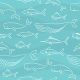 Teste padrão sem emenda do Doodle - peixes grandes Fotografia de Stock
