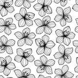 Teste padrão sem emenda do estilo retro preto e branco da flor Imagens de Stock Royalty Free