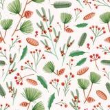 Teste padrão sem emenda do feriado com folhas do azevinho, visco, cones do pinho, agulhas e ramos no fundo branco seasonal ilustração royalty free