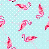 Teste padrão sem emenda do flamingo bonito Fotos de Stock
