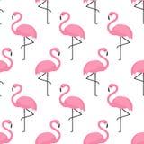 Teste padrão sem emenda do flamingo no fundo branco Foto de Stock Royalty Free
