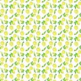Teste padrão sem emenda do frescor do limão, ilustração da aquarela ilustração do vetor