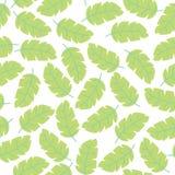 Teste padrão sem emenda do fundo branco pastel do vetor com as folhas coloridas tropicais do monstera Papel de parede floral exót ilustração royalty free