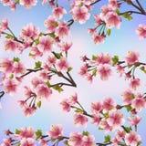 Teste padrão sem emenda do fundo com árvore de sakura Foto de Stock Royalty Free