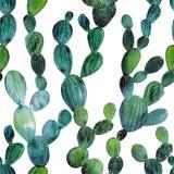 Teste padrão sem emenda do jardim tropical do cacto da aquarela Cacto do Watercolour ilustração do vetor