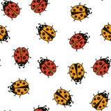 Teste padrão sem emenda do Ladybug Ilustração do vetor Fotografia de Stock Royalty Free