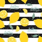 Teste padrão sem emenda do limão com rotulação em listras preto e branco Ilustração do vetor imagens de stock royalty free