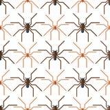 Teste padrão sem emenda do medo do aracnídeo da silhueta da Web de aranha ilustração royalty free