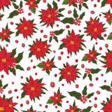 Teste padrão sem emenda do Natal Flores vermelhas do poinsettia ilustração stock