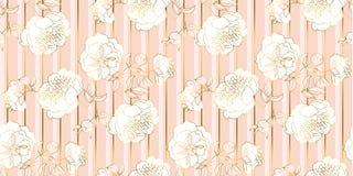 Teste padrão sem emenda do ouro pálido macio e da flor rosado ilustração stock