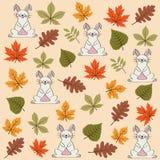 Teste padrão sem emenda do outono com folhas e coelhos ilustração royalty free