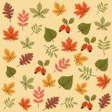 Teste padrão sem emenda do outono com folhas ilustração royalty free