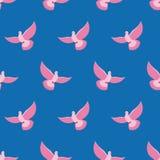 Teste padrão sem emenda do pombo cor-de-rosa O pássaro cor-de-rosa está voando em vagabundos do céu azul Foto de Stock