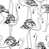 Teste padrão sem emenda do recolhimento exótico do grupo do brilho dos flamingos Desenho de esboço branco preto do esboço ilustração do vetor