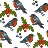 Teste padrão sem emenda do símbolo do pássaro e do visco do dom-fafe do Feliz Natal ilustração do vetor