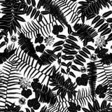 Teste padrão sem emenda do sillouette preto e branco do vetor com samambaias, folhas e a flor selvagem Apropriado para a matéria  ilustração stock