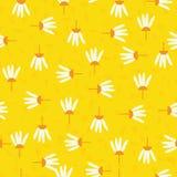 Teste padrão sem emenda do sumário abstrato da flor da margarida com fundo branco ilustração royalty free