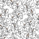 Teste padrão sem emenda do tipo de flor ilustração do vetor