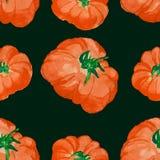 Teste padrão sem emenda do tomate da aquarela Fotografia de Stock